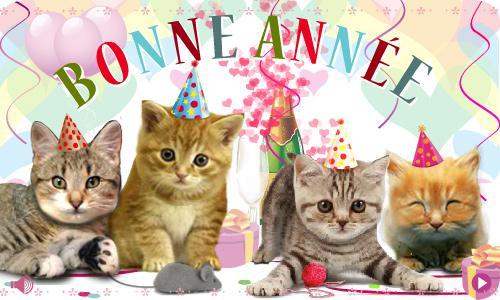 année de chat