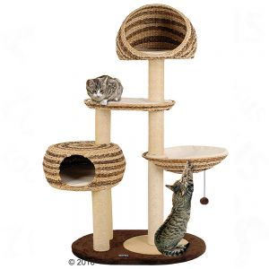 arbre a chat outdoor