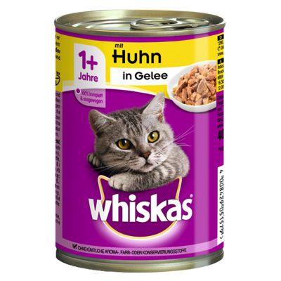 boite pour chat