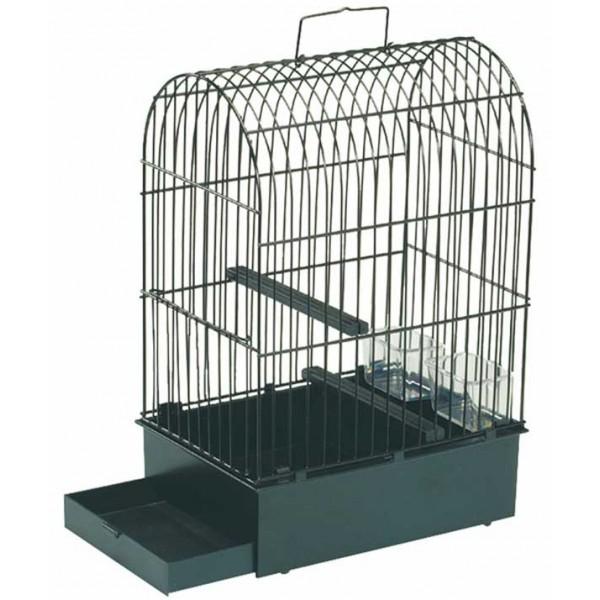 cage a canari