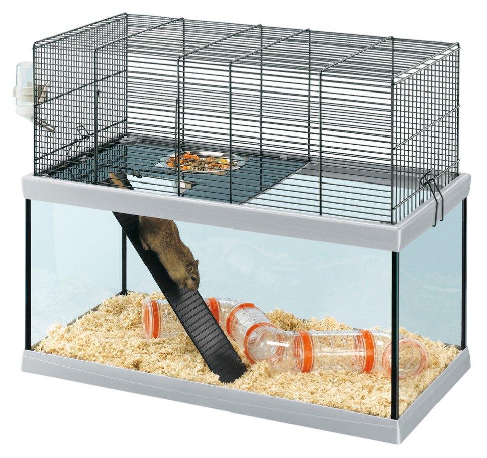 cage gerbille verre