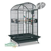cage montana