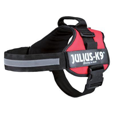 harnais pour chien julius k9