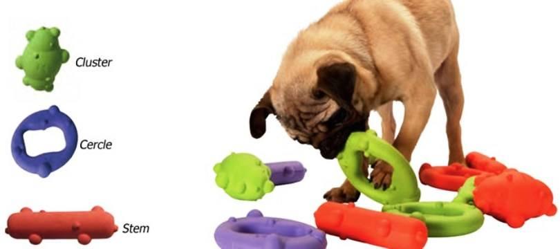 jouet chien indestructible