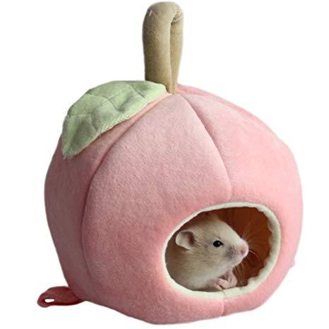 jouet cochon d inde