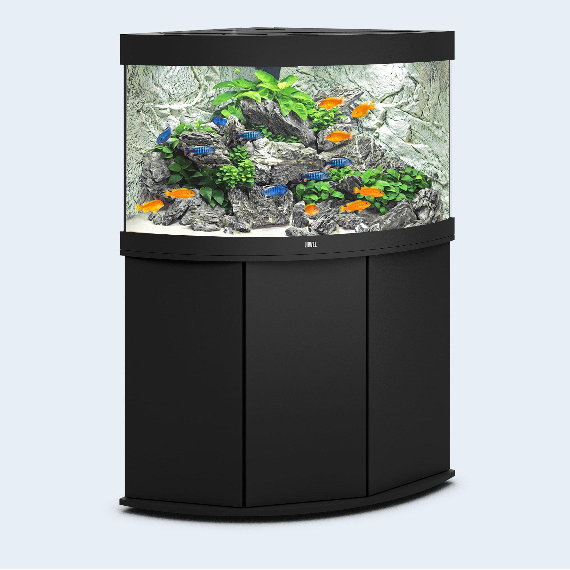 juwel aquarium