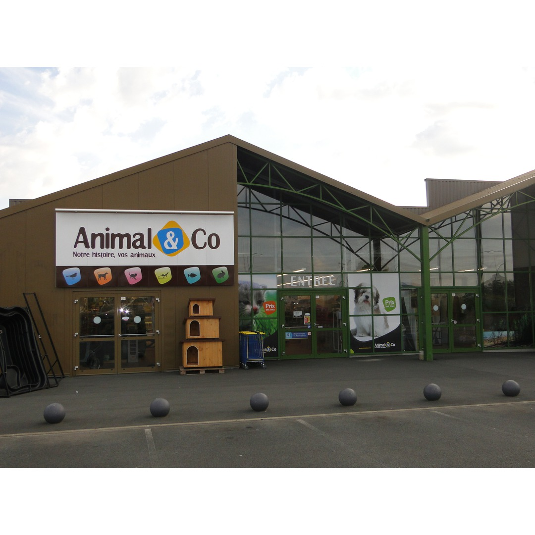 magasin animaux