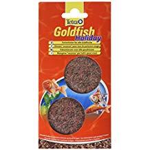 nourriture poisson vacances